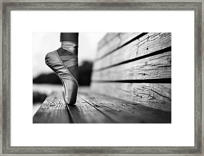 Aplomb Framed Print by Laura Fasulo