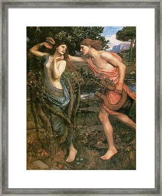 Apollo And Daphne Framed Print by John William Waterhouse