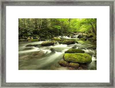 Appalachian Spring Stream Framed Print by Phyllis Peterson