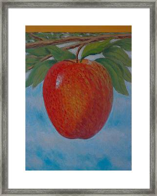 Apple 1 In A Series Of 3 Framed Print by Don Young