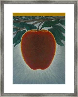 Apple 2 In A Series Of 3 Framed Print by Don Young