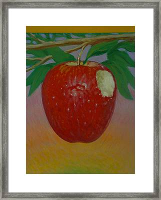 Apple 3 In A Series Of 3 Framed Print by Don Young