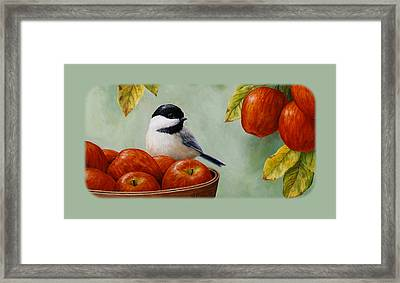Apple Chickadee Iphone5 Case - Green Framed Print by Crista Forest