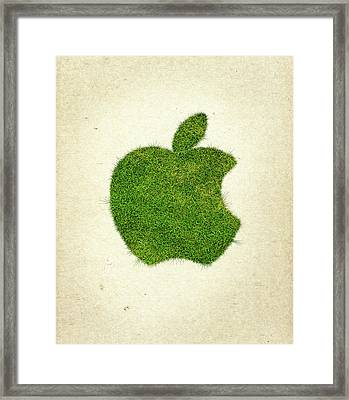 Apple Grass Logo Framed Print by Aged Pixel