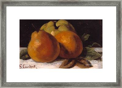 Apple Pear And Orange Framed Print by Gustave Courbet