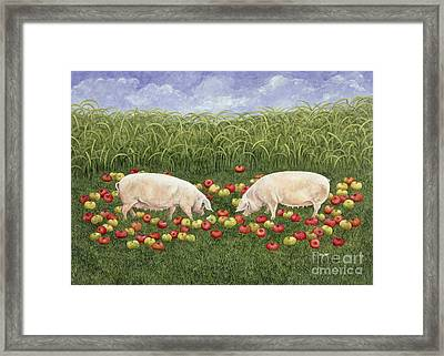 Apple Sows Framed Print by Ditz