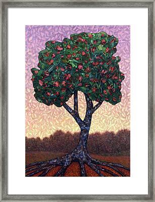 Apple Tree Framed Print by James W Johnson