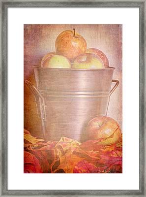 Apples Aplenty  Framed Print by Heidi Smith