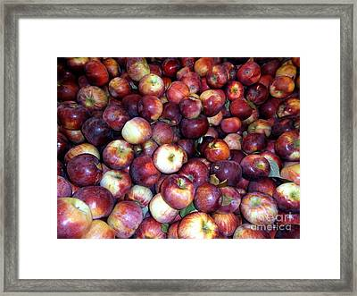 Apples Framed Print by Janine Riley