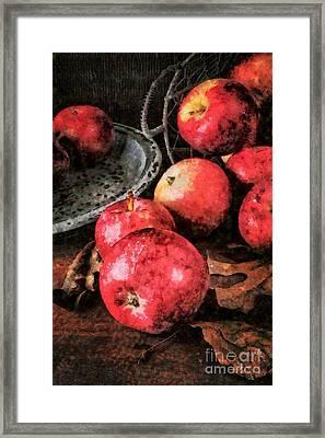 Apples Still Life Cezanne Style Framed Print by Edward Fielding