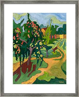 Appletree Framed Print by Marta Martonfi Benke