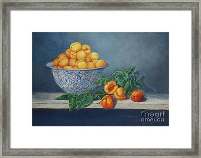 Apricots And Peaches Framed Print by Enzie Shahmiri