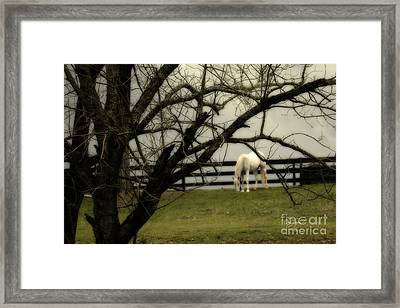 April Showers Framed Print by Cris Hayes