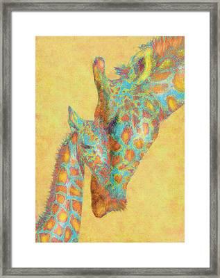 Aqua And Orange Giraffes Framed Print by Jane Schnetlage