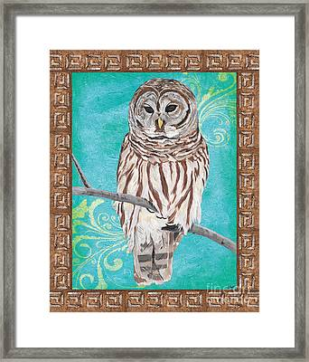 Aqua Barred Owl Framed Print by Debbie DeWitt