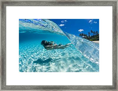 Aqua Dive Framed Print by Sean Davey
