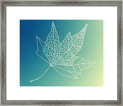 Aqua Leaf Study 2 Framed Print by Cathy Jacobs