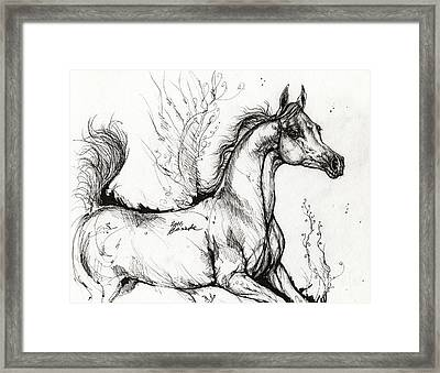 Arabian Horse Drawing 1 Framed Print by Angel  Tarantella