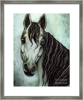 Arabian Horse  Framed Print by Janine Riley