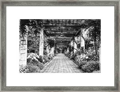 Arbor Walkway Framed Print by Phyllis Peterson