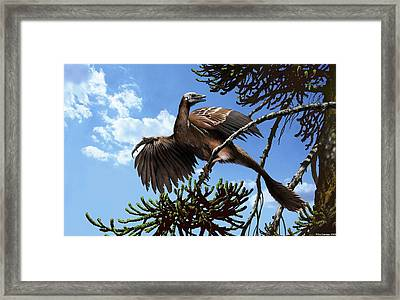 Archaeopteryx Framed Print by Jaime Chirinos