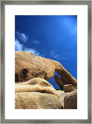 Arching So Elegantly Framed Print by Laurie Search