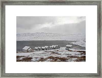 Arctic Winter Framed Print by Gry Thunes