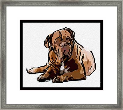 Are You Talking To Me Framed Print by Omaste Witkowski