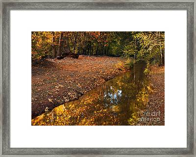 Arizona Autumn Reflections Framed Print by Mike  Dawson