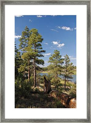 Arizona High Country Framed Print by Edward Curtis