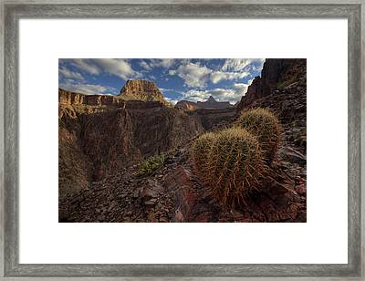 Arizona Morning Framed Print by Kiril Kirkov