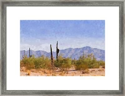 Arizona Sonoran Desert Framed Print by Betty LaRue