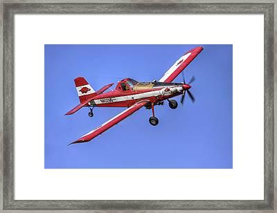 Arkansas Razorbacks Air Tractor Framed Print by Jason Politte