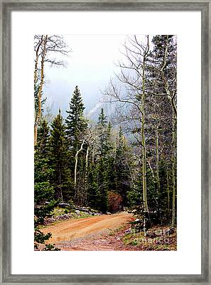 Around The Bend Framed Print by Barbara Chichester