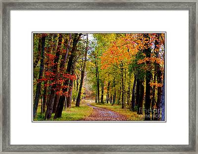 Around The Bend Framed Print by Patti Whitten