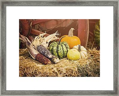 Arrival Of Autumn Framed Print by Heather Applegate
