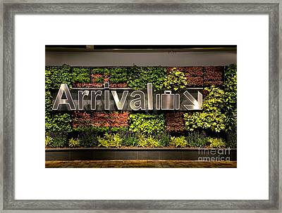 Arrival Sign Arrow And Flowers At Singapore Changi Airport Framed Print by Imran Ahmed