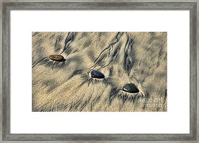 Art By Mother Nature Framed Print by Peggy Hughes