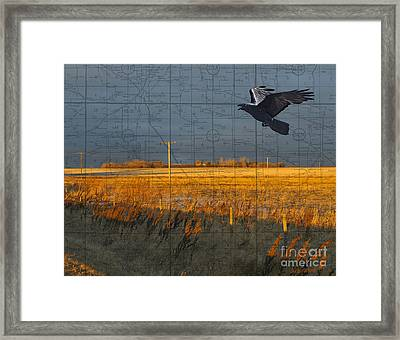 As The Crow Flies-fall Fields Framed Print by Judy Wood