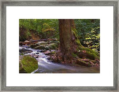 As The River Runs Framed Print by Karol Livote