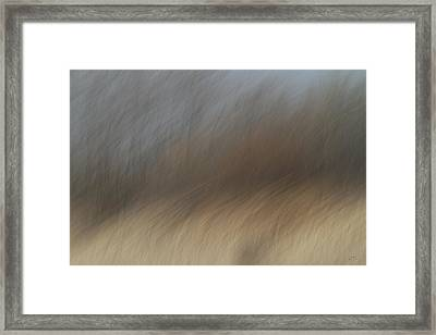 As The Wind Blows Framed Print by Karol Livote
