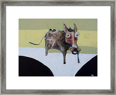 Asellus No.1 Framed Print by Mark M  Mellon