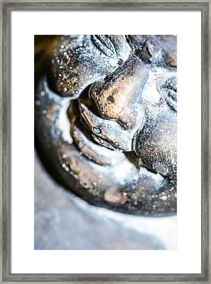 Asian Origin  Framed Print by Toppart Sweden