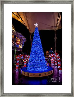 Asian Christmas Display Framed Print by Adrian Evans