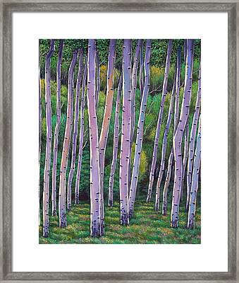 Aspen Enclave Framed Print by Johnathan Harris