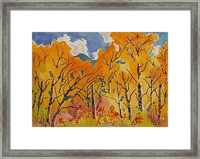 Aspen In Orange Steamboat Springs Colorado Framed Print by Zanobia Shalks