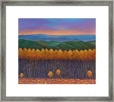Aspen Perspective Framed Print by Johnathan Harris