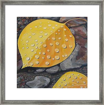 Aspen Rain Framed Print by Hunter Jay