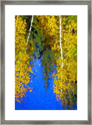 Aspen Reflection Framed Print by Pat Now