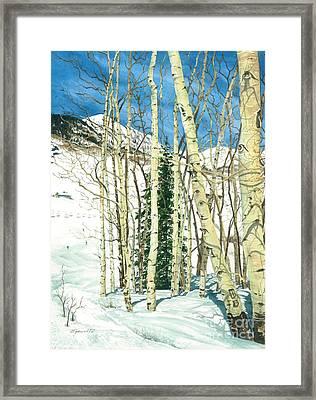 Aspen Shelter Framed Print by Barbara Jewell